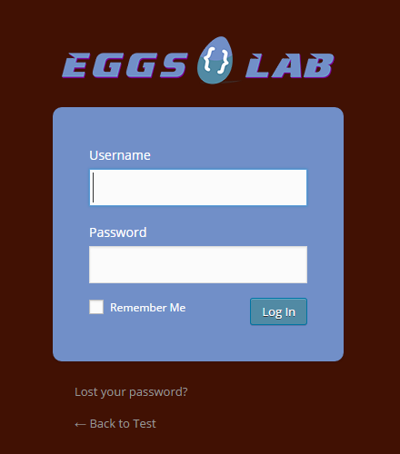 The new login page after login form customization